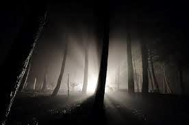 light into darkness