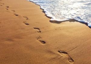 9e4188ebd39992bb6abdc0aecb80dae0--sand-footprint-footprints